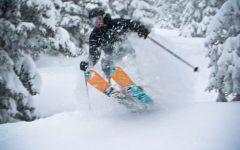 Snowshoe vs. Canaan Valley Ski Resort
