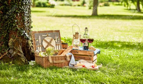Summer picnic basket with food and glasses of wine on grass under tree in park